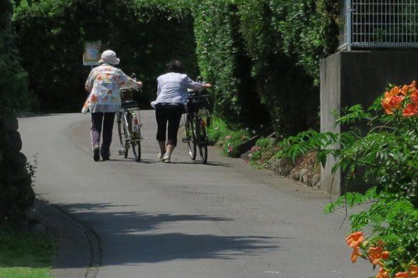 ご年配、自転車を引く
