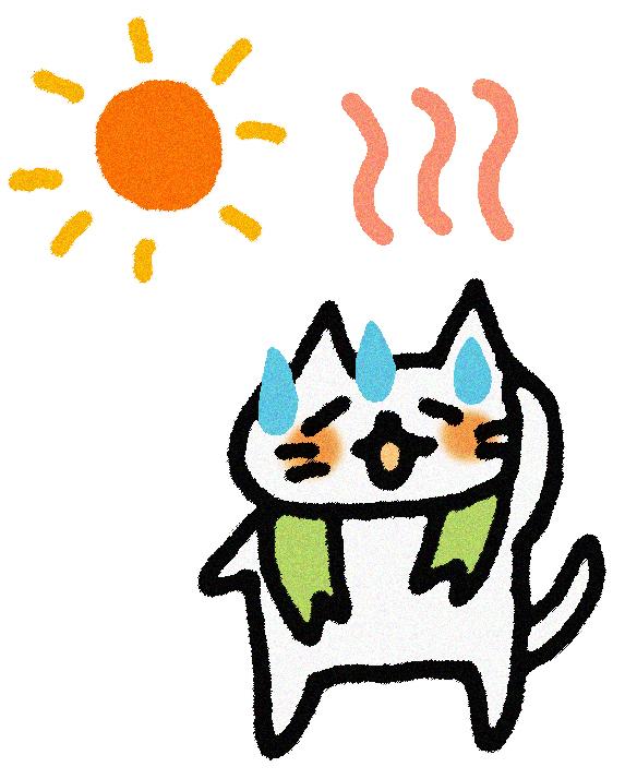 ネコ、熱中症、脱水