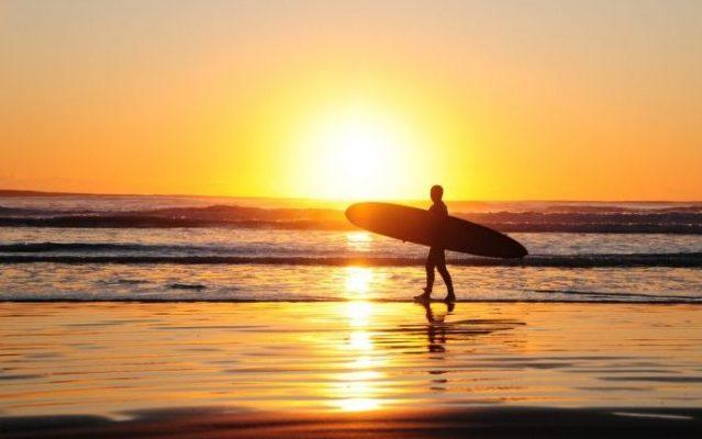 サーフィン、夏、海辺、浜辺、海岸