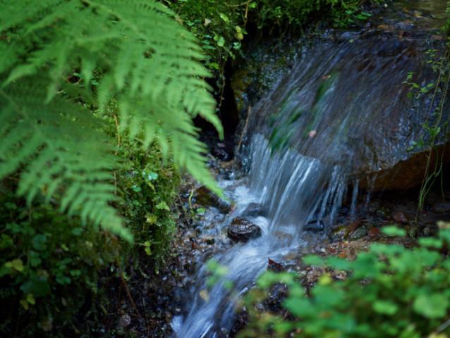川、水、キレイな水、流水、せせらぎ、癒し、マイナスイオン