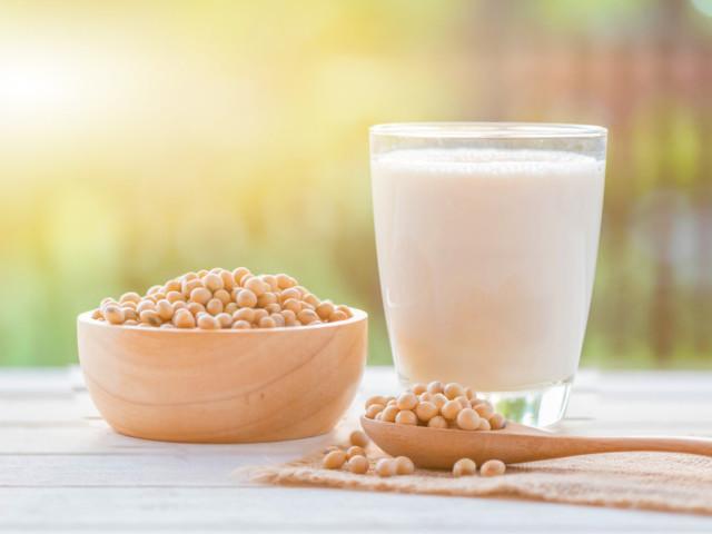 大豆、SOY、豆乳、エクエル、エクオール、soybeans、soy milk