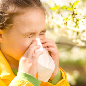 アレルギー性疾患、アレルギー、鼻炎、花粉症、allergy、花粉症対策