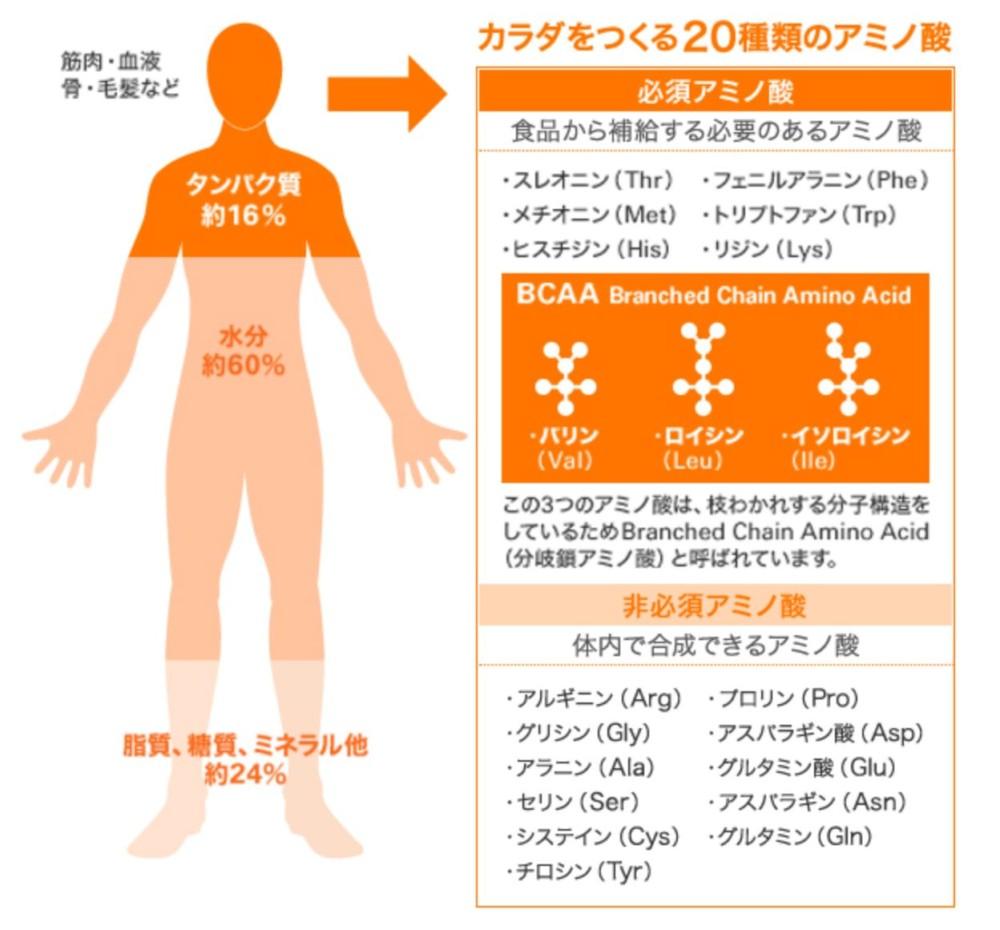 大塚製薬、アミノバリュー、アミノ酸飲料、アミノ酸含有スポーツドリンク、必須アミノ酸