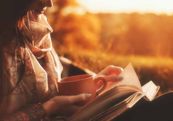 読書、本、book、BOOK、物語、ストーリー