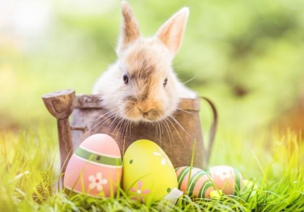 イースター、イースターの日、キリスト復活祭、イースターエッグ