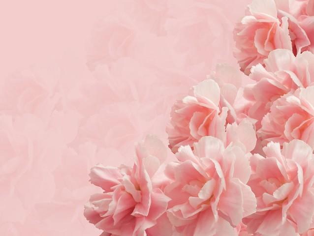 母の日、母の日のプレゼント、母の日の贈り物、母の日 花