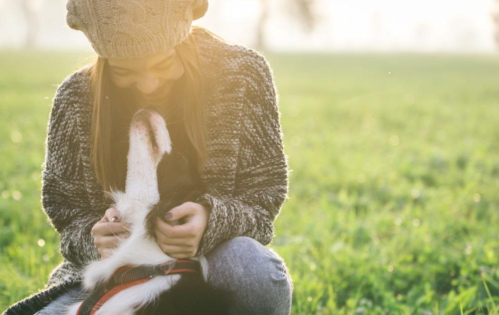ペット、犬、猫、ペットロス、ペットロス乗り越え方、ペットロス症候群